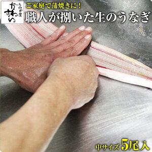 [バーベキューにもオススメ]捌いた国産うなぎ 中サイズ5本[5P 1kg]送料無料 BBQ ウナギ 鰻 生 調理済み ひらき 業務用 腹開き[MP]