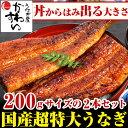 超特大うなぎ蒲焼き 200g×2本セット【お中元 ウナギ 鰻 国産 贈り物 残暑見舞い】