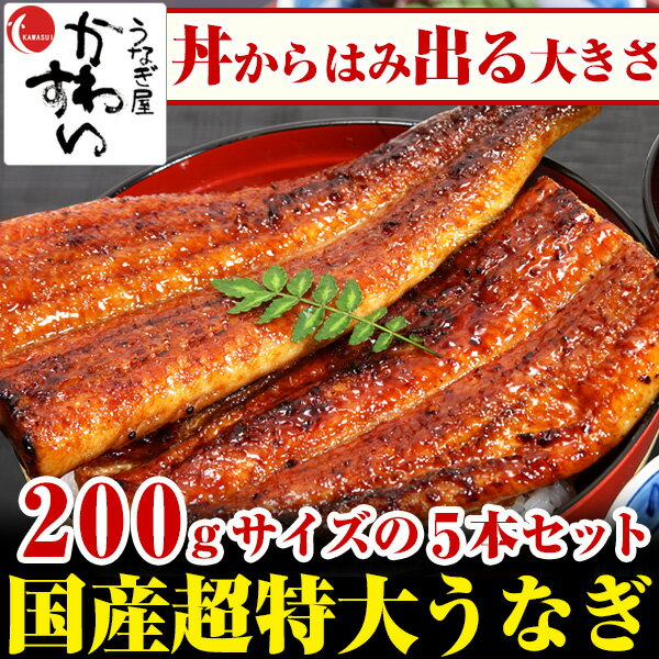 \今年は7月20日 夏の土用丑/超特大うなぎ蒲焼き 200g×5本セット【ウナギ 鰻 国産 贈り物 誕生日 お祝い 内祝い ギフト 高級 魚介】