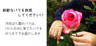 河田ばら園新鮮なバラを体感してください誕生日花母女性男性ギフト父誕生日プレゼント退職祝い結婚記念日