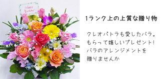 河田ばら園クレオパトラも愛したバラ誕生日花母女性男性ギフト父誕生日プレゼント退職祝い結婚記念日