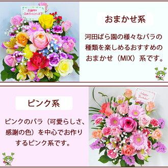 河田ばら園おまかせMIX系ピンク系誕生日花母女性男性ギフト父誕生日プレゼント退職祝い結婚記念日