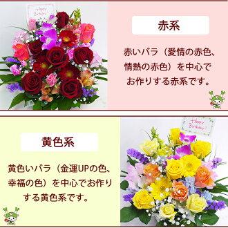 河田ばら園赤系黄色系誕生日花母女性男性ギフト父誕生日プレゼント退職祝い結婚記念日