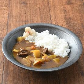 カレー皿8寸 黒 | 川端滝三郎商店 お皿 おしゃれ 24cm 食器 和食器 日本製 信楽焼