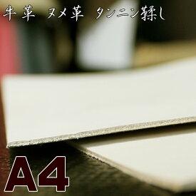 【A4サイズ】牛革 ヌメ革 / タンニンなめし / A4 (29.7cmx21.0cm) / 約2mm厚 / カットレザー / クラフト材料 / 皮 / かわ / 革 はぎれ [aqua-leather-nume]【定番】【クリックポストで送料無料】
