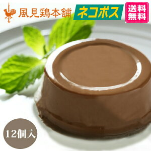 チョコレートムース 送料無料 12個セット ネコポス 常温 生チョコ オレンジ 上品 とろける 濃厚 父の日2021 お中元