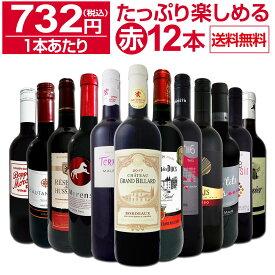 【送料無料】第24弾!1本あたり732円(税込)!!採算度外視の大感謝!厳選赤ワイン12本セットワイン ワインセット セット 赤ワインセット 赤ワイン 赤 飲み比べ ギフト プレゼント 750ml
