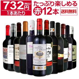 【送料無料】第26弾!1本あたり732円(税込)!!採算度外視の大感謝!厳選赤ワイン12本セットワイン ワインセット セット 赤ワインセット 赤ワイン 赤 飲み比べ ギフト プレゼント 750ml