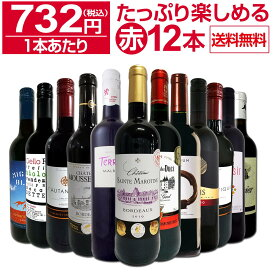 【送料無料】第27弾!1本あたり732円(税込)!!採算度外視の大感謝!厳選赤ワイン12本セットワイン ワインセット セット 赤ワインセット 赤ワイン 赤 飲み比べ ギフト プレゼント 750ml