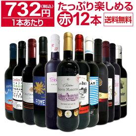 【送料無料】第28弾!1本あたり732円(税込)!!採算度外視の大感謝!厳選赤ワイン12本セットワイン ワインセット セット 赤ワインセット 赤ワイン 赤 飲み比べ ギフト プレゼント 750ml