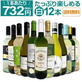 【送料無料】第26弾!1本あたり732円(税込)!!採算度外視の大感謝!厳選白ワイン12本セット