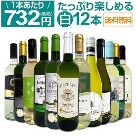 【送料無料】第27弾!1本あたり732円(税込)!!採算度外視の大感謝!厳選白ワイン12本セット