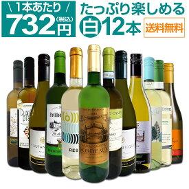 【送料無料】第30弾!1本あたり732円(税込)!!採算度外視の大感謝!厳選白ワイン12本セット