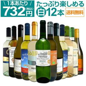 【送料無料】第31弾!1本あたり732円(税込)!!採算度外視の大感謝!厳選白ワイン12本セット