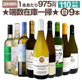 【送料無料★110セット限り】端数在庫一掃★白ワイン9本セット!!