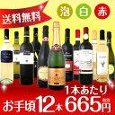 スパークリングワイン 赤ワイン ウルトラ バリュー スパーク ワインセッ