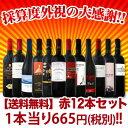 【送料無料】1本あたり665円(税別)★採算度外視の大感謝★イタリア・スペイン赤ワイン12本セット