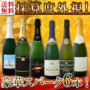 【送料無料】第89弾!ベスト・オブ・スパーク!京橋ワイン厳選!高級クレマンも入った極旨泡ばかりの辛口スパークリン…