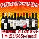 【お盆も通常出荷】【送料無料】1本あたり665円(税別)!採算度外視の大感謝!厳選赤ワイン12本セット