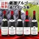 [クーポンで最大2,000円OFF]【送料無料】特大感謝のブルゴーニュ赤ワイン大放出5本セット!