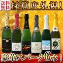 【送料無料】第91弾!ベスト・オブ・スパーク!京橋ワイン厳選!高級クレマンも入った極旨泡ばかりの辛口スパークリン…