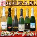 【送料無料】第94弾!ベスト・オブ・スパーク!京橋ワイン厳選!高級クレマンも入った極旨泡ばかりの辛口スパークリン…