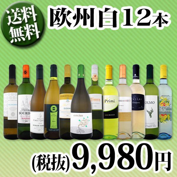 【送料無料】第65弾!超特大感謝!≪スタッフ厳選≫の激得白ワイン12本9,980円(税別)セット!