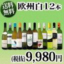 【送料無料】第70弾!超特大感謝!≪スタッフ厳選≫の激得白ワイン12本9,980円(税別)セット!