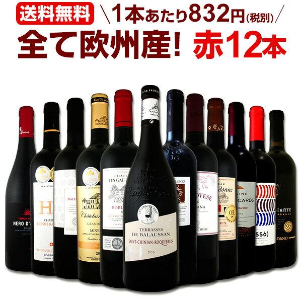 ワイン 【送料無料】第104弾!超特大感謝!≪スタッフ厳選≫の激得赤ワインセット 12本!