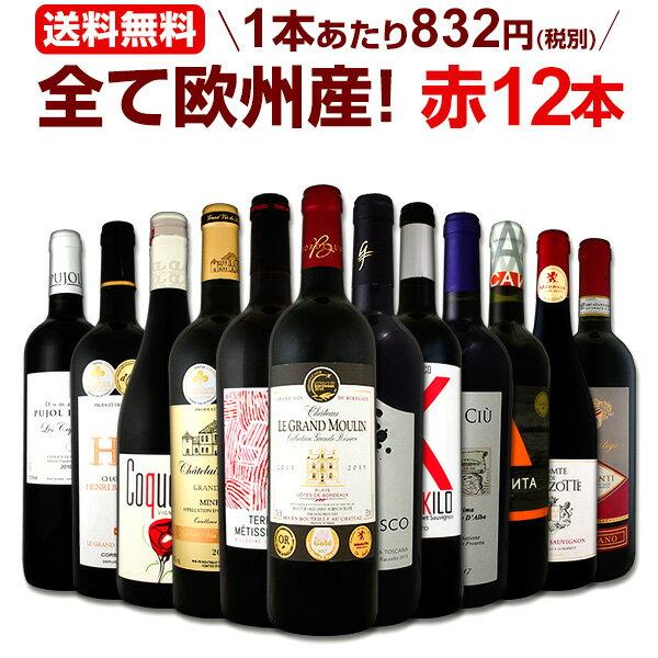 ワイン 【送料無料】第107弾!超特大感謝!≪スタッフ厳選≫の激得赤ワインセット 12本!