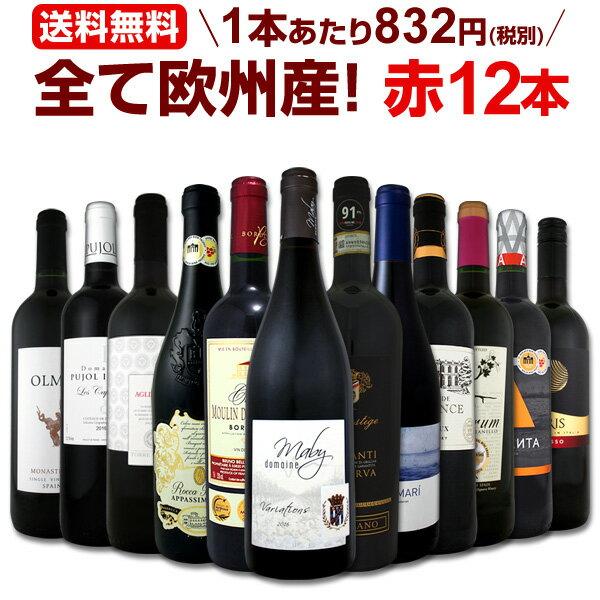 ワイン 【送料無料】第96弾!超特大感謝!≪スタッフ厳選≫の激得赤ワインセット 12本!