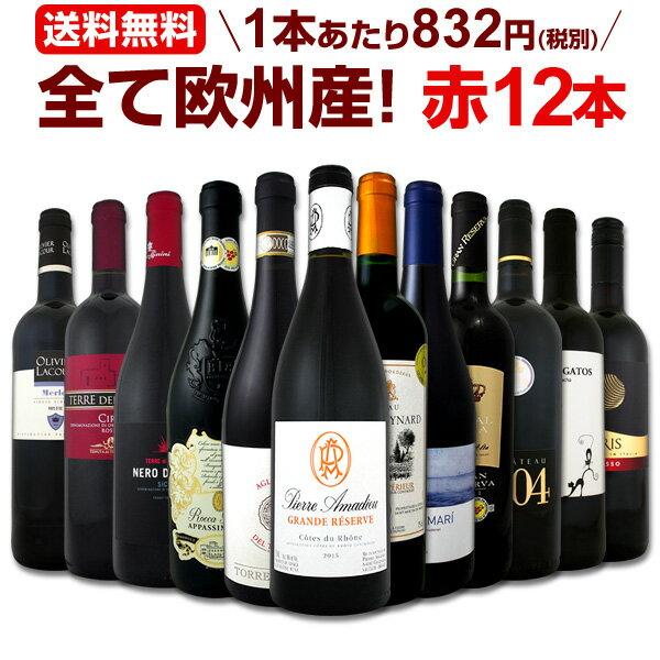 [クーポンで10%OFF]ワイン 【送料無料】第99弾!超特大感謝!≪スタッフ厳選≫の激得赤ワインセット 12本!