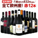 ワイン 【送料無料】第99弾!超特大感謝!≪スタッフ厳選≫の激得赤ワインセット 12本!