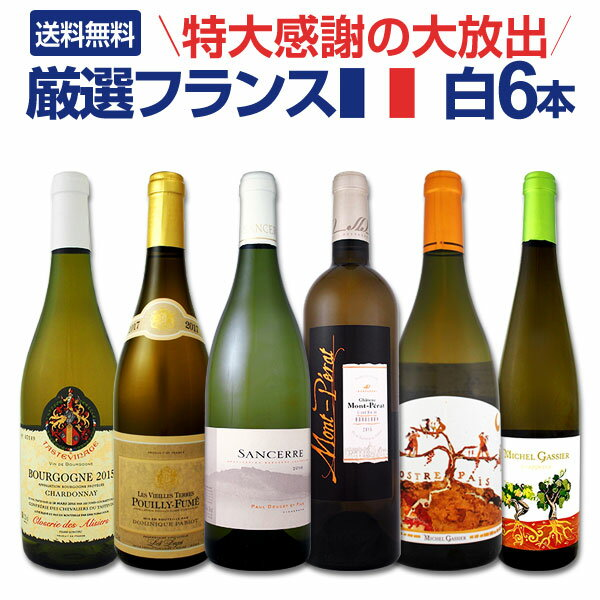 白ワイン セット 【送料無料】第101弾!特大感謝の厳選フランス白ワインセット 6本!