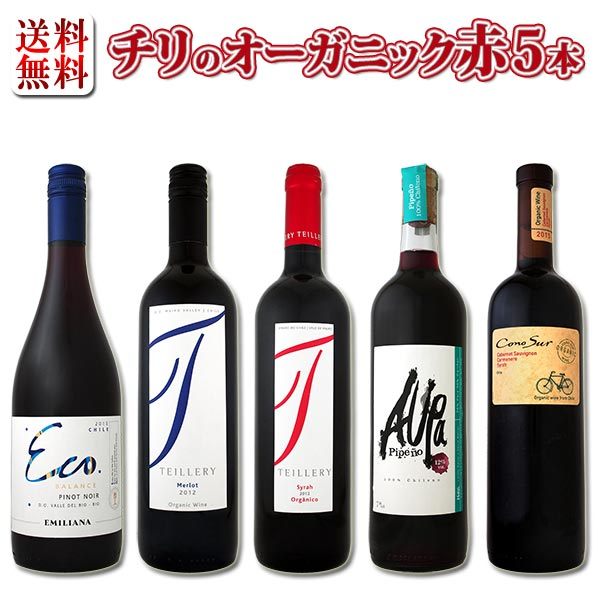 【送料無料】ワイン醸造の理想郷、チリのオーガニックワイン5本セット!