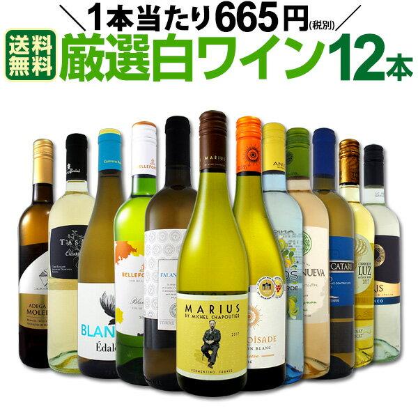 [クーポンで10%OFF]【送料無料】1本あたり665円(税別)!採算度外視の大感謝!厳選白ワイン12本セット