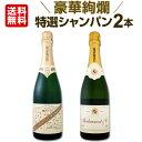 [クーポンで10%OFF]シャンパン 【送料無料】第23弾!豪華絢爛!ご愛顧に大感謝!数量限定!特選シャンパンセット(スパークリングワインセット) 2本!