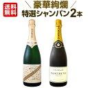 [クーポンで10%OFF]シャンパン 【送料無料】第24弾!豪華絢爛!ご愛顧に大感謝!数量限定!特選シャンパンセット(スパークリングワインセット) 2本!