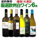 [クーポンで10%OFF]ワイン 【送料無料】第111弾!当店厳選!これぞ極旨辛口白ワイン!『白ワインを存分に楽しむ!』味わい深いスーパー…