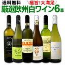 ワイン 【送料無料】第114弾!当店厳選!これぞ極旨辛口白ワイン!『白ワインを存分に楽しむ!』味わい深いスーパー・…
