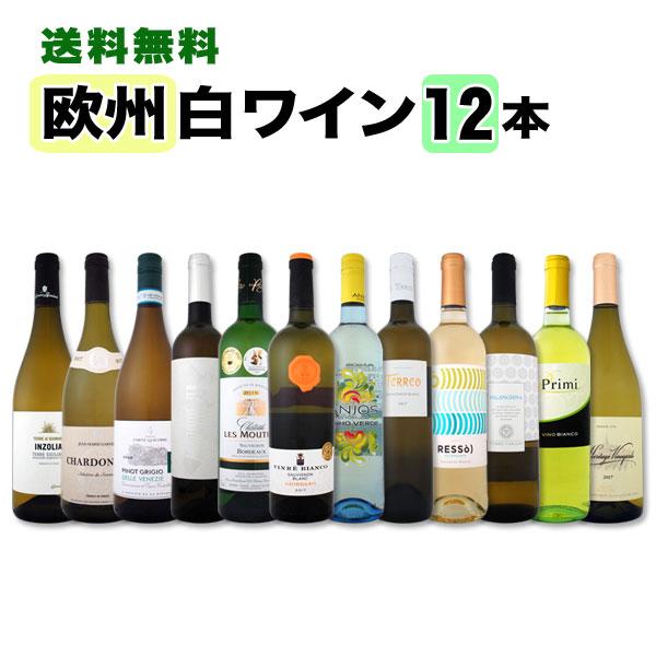 白ワイン セット 【送料無料】第79弾!超特大感謝!≪スタッフ厳選≫の激得白ワインセット 12本!
