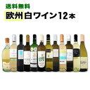 白ワイン セット 【送料無料】第80弾!超特大感謝!≪スタッフ厳選≫の激得白ワインセット 12本!