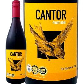 【5月月間セール対象商品】カントール・ピノ・ノワール 2017【チリ】【750ml】【赤ワイン】