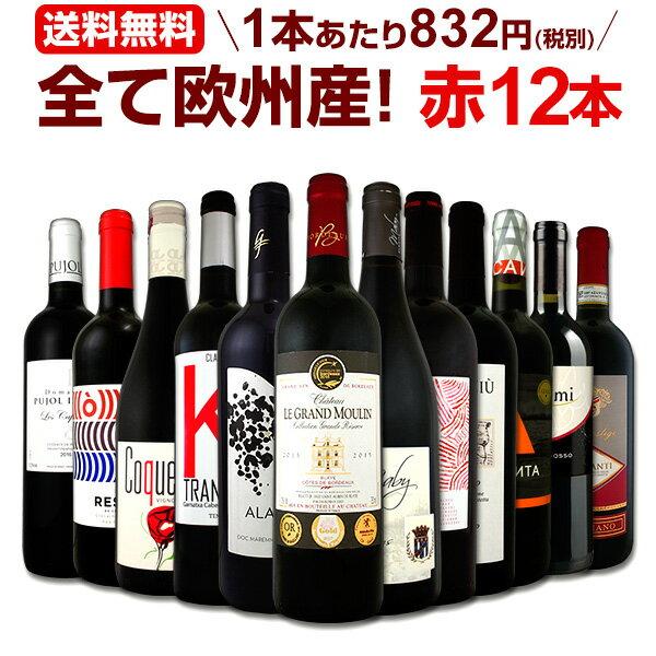 ワイン 【送料無料】第109弾!超特大感謝!≪スタッフ厳選≫の激得赤ワインセット 12本!
