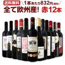 ワイン 【送料無料】第110弾!超特大感謝!≪スタッフ厳選≫の激得赤ワインセット 12本!