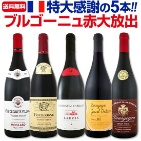[クーポンで10%OFF]【送料無料】特大感謝のブルゴーニュ赤ワイン大放出5本セット!