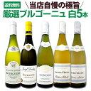 [クーポンで7%OFF]【送料無料】厳選ブルゴーニュ白ワイン5本セット!!