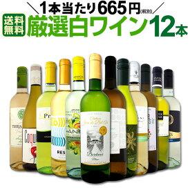 [クーポンで7%OFF]【送料無料】1本あたり665円(税別)!!採算度外視の大感謝!厳選白ワイン12本セット