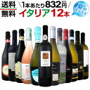 【送料無料】≪赤・白・ロゼ・スパーク≫夏のオススメ激旨イタリアワイン12本セット!!