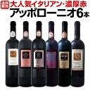 【送料無料】大人気イタリアン【アッポローニオ】濃厚赤ワインセット 6本!